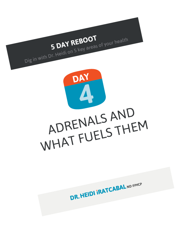 5 Day Reboot: Day 4, Adrenals and what fuels them