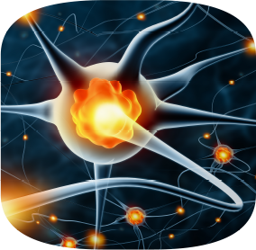 Brain Body Connection - Image of lit up neuron connecting to another